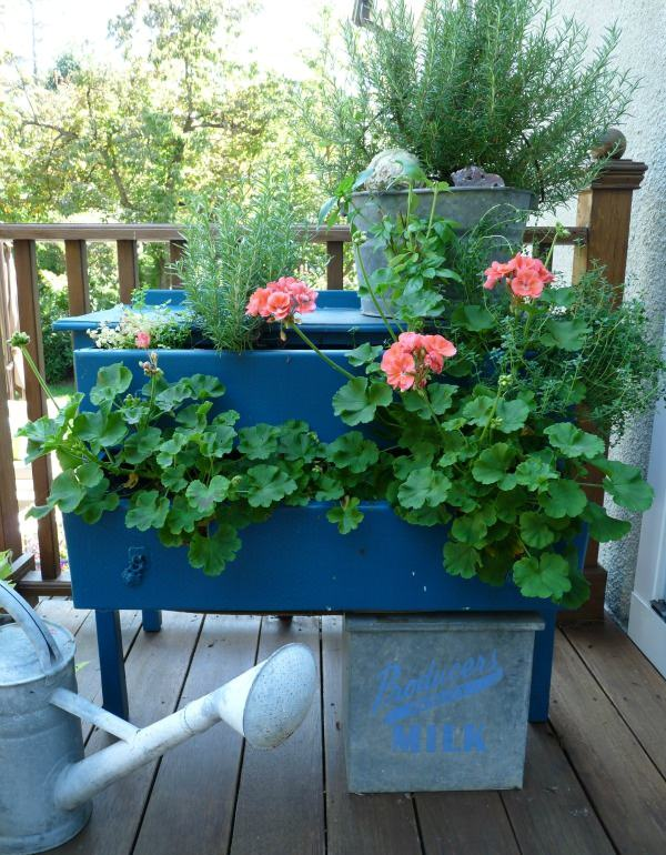 dresser planter - Planter Ideas