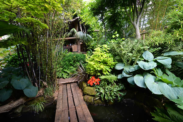 bamboos in tropical garden - Garden Design Tropical