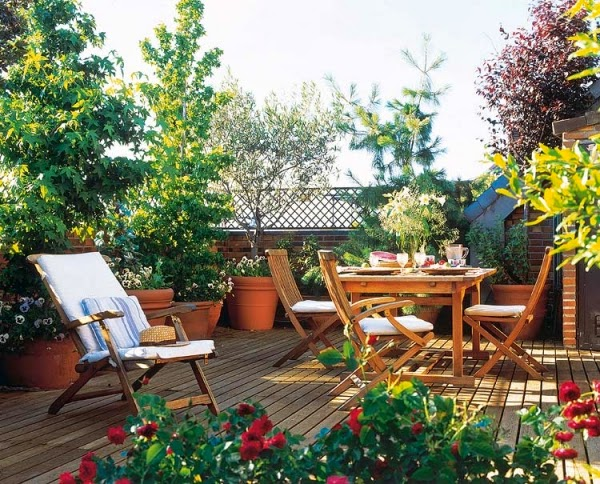 if you have a large rooftop or have a bad view from there or if you want to get a real garden like feel do little high vegetation around the walls to