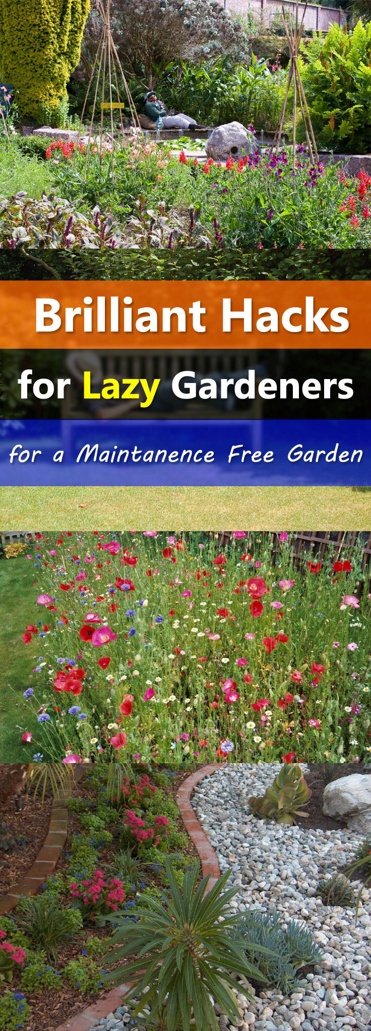 Easy landscaping tips for a low maintenance garden for Easy gardens to maintain