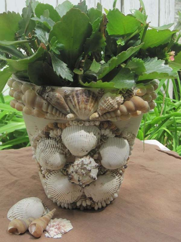 Awesome Diy Shell Planter