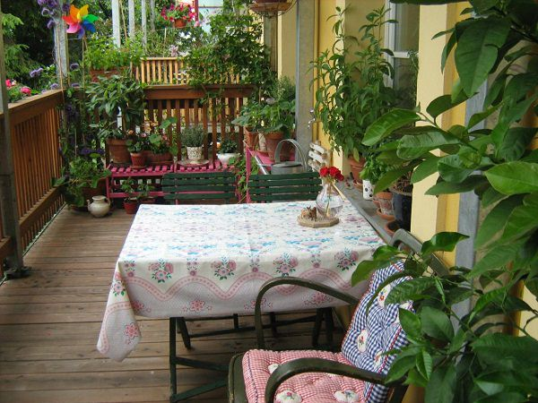 7 Apartment Herb Garden Tips Apartment Gardening Balcony Garden Web