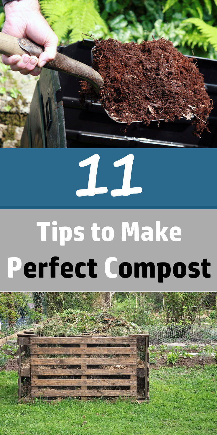 11 Best Composting Tips to Create a Perfect Compost | Balcony Garden Web