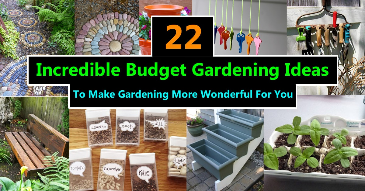 22 incredible budget gardening ideas garden ideas on a for Garden designs on a budget