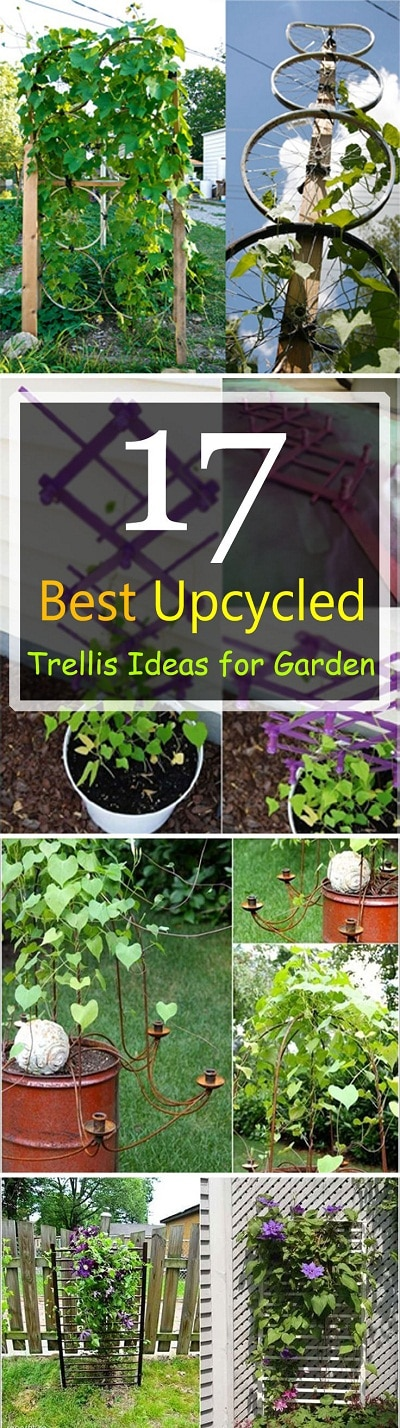 Ideas For Trellis In Garden Part - 23: Many Things That You Throw Away Can Be Useful In The Garden. If You Don
