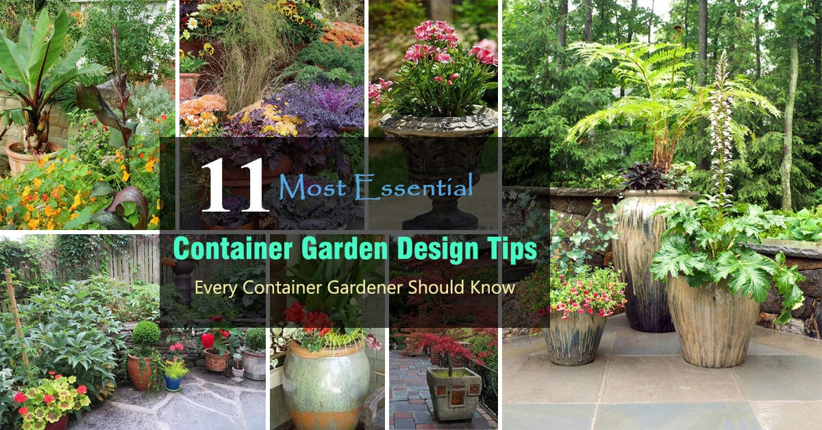 Container Garden Design potted plants on front porch 11 Most Essential Container Garden Design Tips Designing A Container Garden Balcony Garden Web