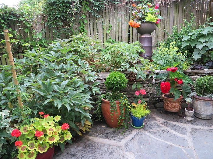 Container Garden Design 13 container gardening ideas potted plant ideas we love Container Plants Arranged According To Height Designing A Container Garden