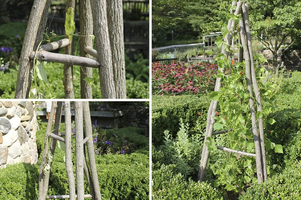 17 Best Upcycled Trellis Ideas For Garden | Cool Trellis Designs