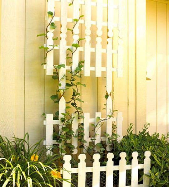 39 Garden Trellis Ideas: Fabulous Support for All Your Climbing Needs
