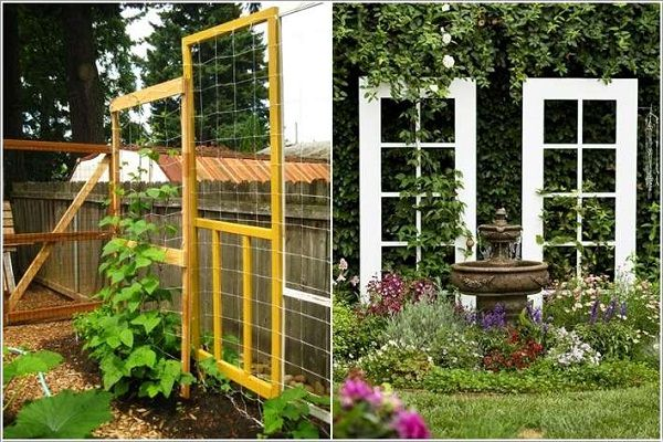 Old Doors As Trellis