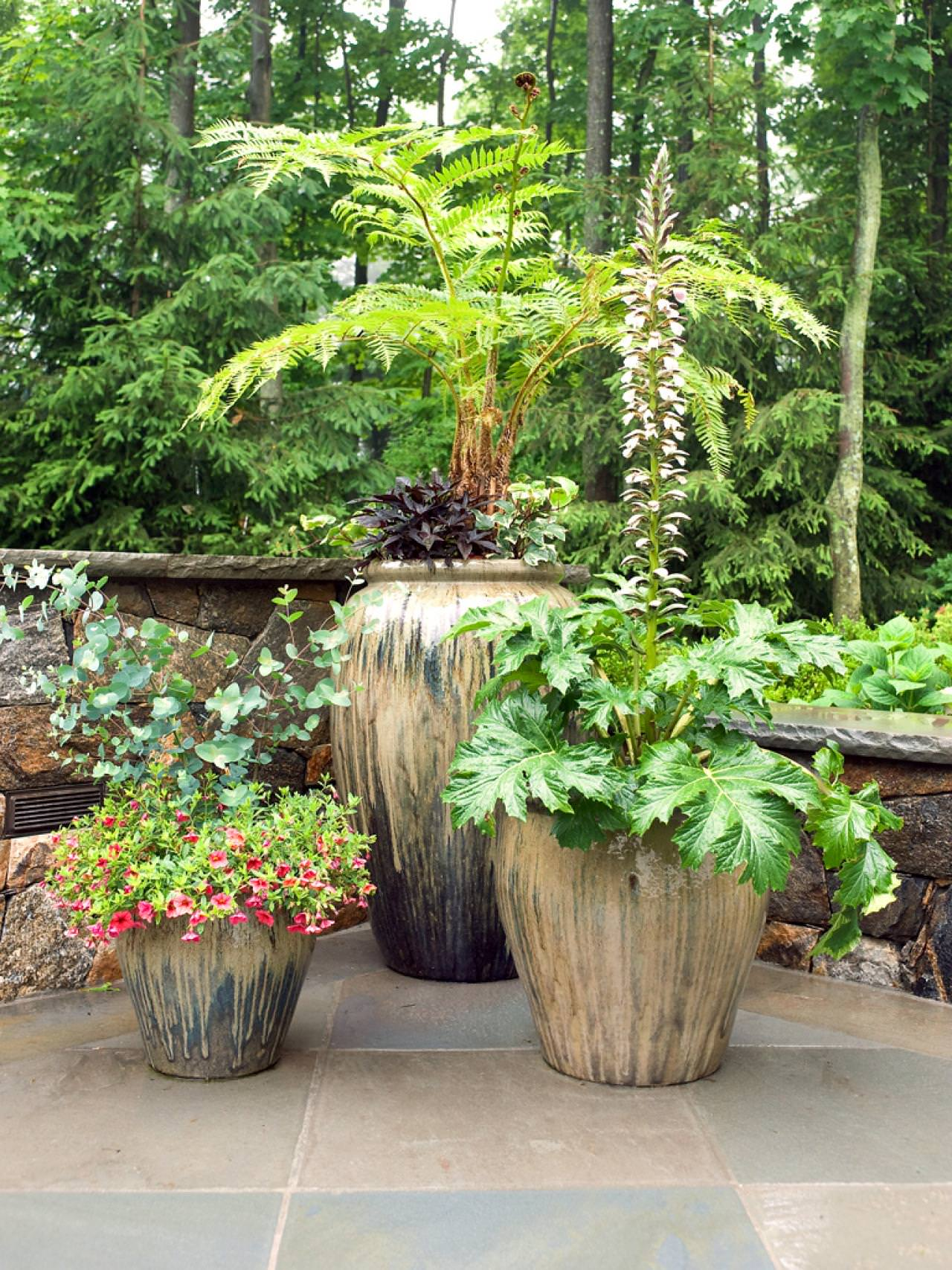 plant several plant in a large container instead of planting in many small containers this will make your container garden more organized and uncluttered