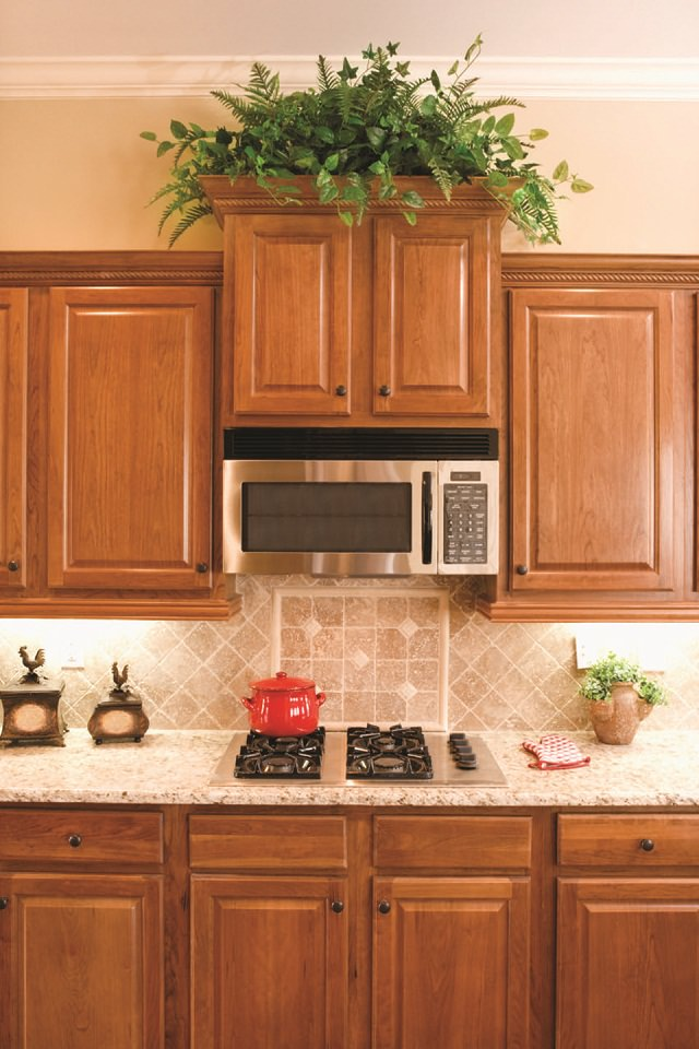 Best kitchen plants plants for kitchen to decorate it for Kitchen cabinets price range