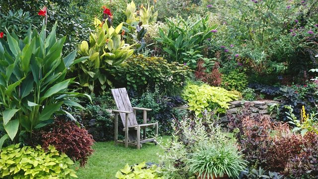 Exceptionnel A Beautiful Tropical Garden Divided Into Sections Looking Mystical And Large