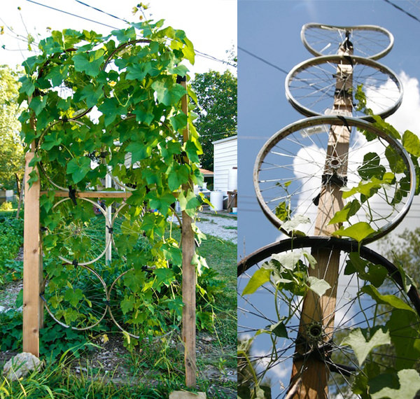 Trellis Ideas For Gardens 17 best upcycled trellis ideas for garden cool trellis designs for upcycled trellis from wheels 2 workwithnaturefo