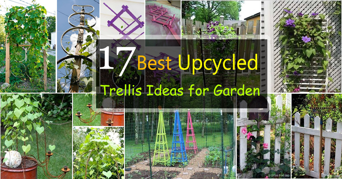 Superb Trellis Gardening Ideas Part - 1: 17 Best Upcycled Trellis Ideas For Garden | Cool Trellis Designs For Gardens  | Balcony Garden Web