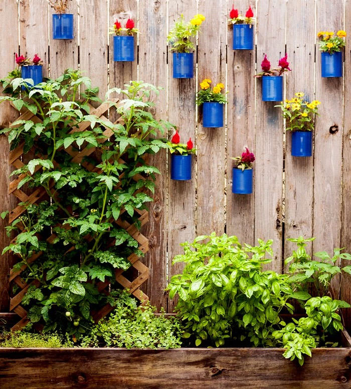 Attractive Cans On The Fence. Garden Fence Ideas 7
