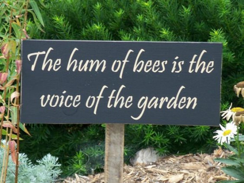 Garden Sign Ideas garden sign gift for gardener to plant a garden is to believe in tomorrow rustic garden sign porch sign great for garden shed Garden Sign For Bee Lovers