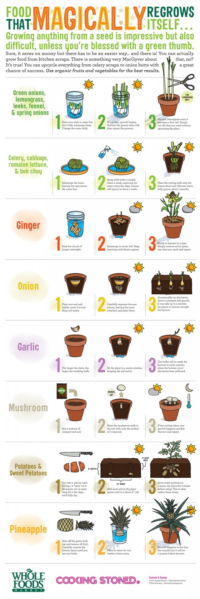 12 Kitchen Residues & Leftovers That You Can Use In Your Garden ...