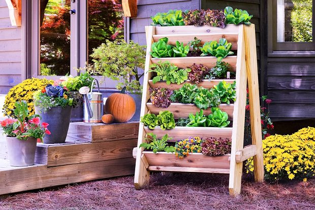 Vertical Gardening Ideas a vertical garden on a wall Vertical Lettuce Planter