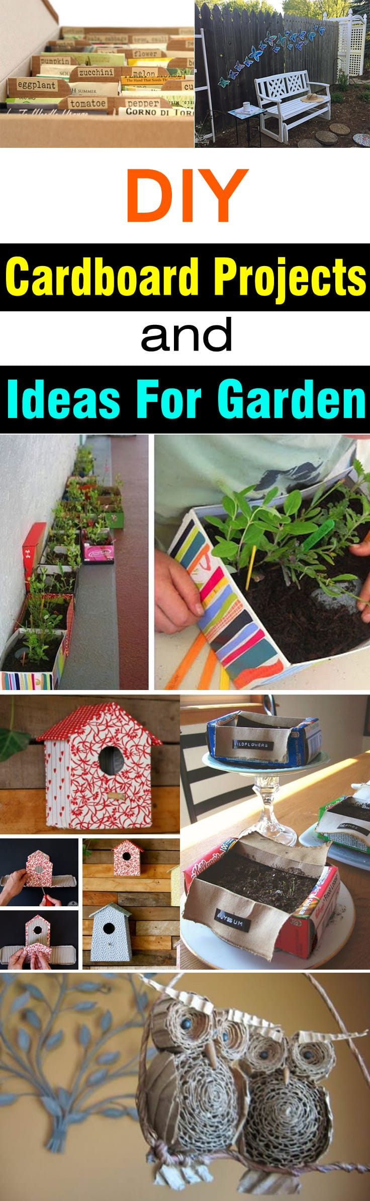 Diy cardboard projects ideas for garden balcony garden web if you love to recycle and have cardboards dont throw them workwithnaturefo