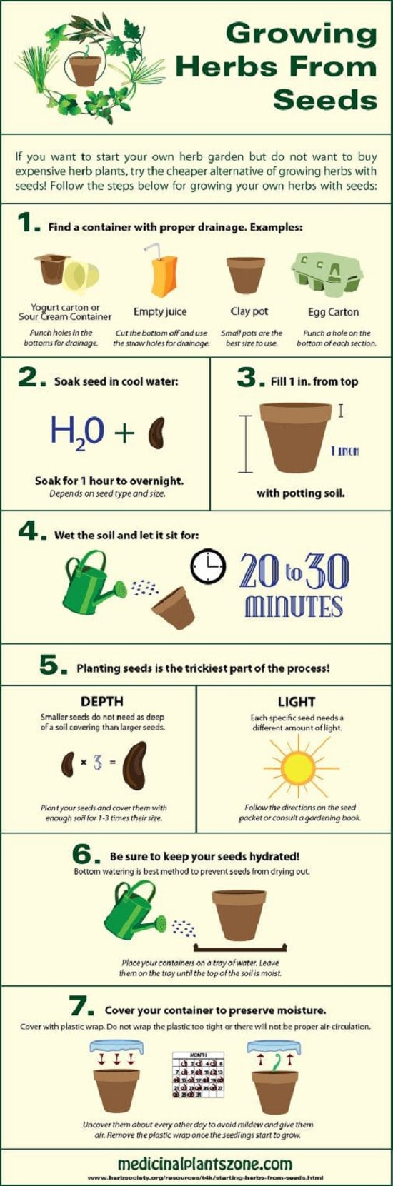 7 Infographics Thatll Teach You Everything About Growing An