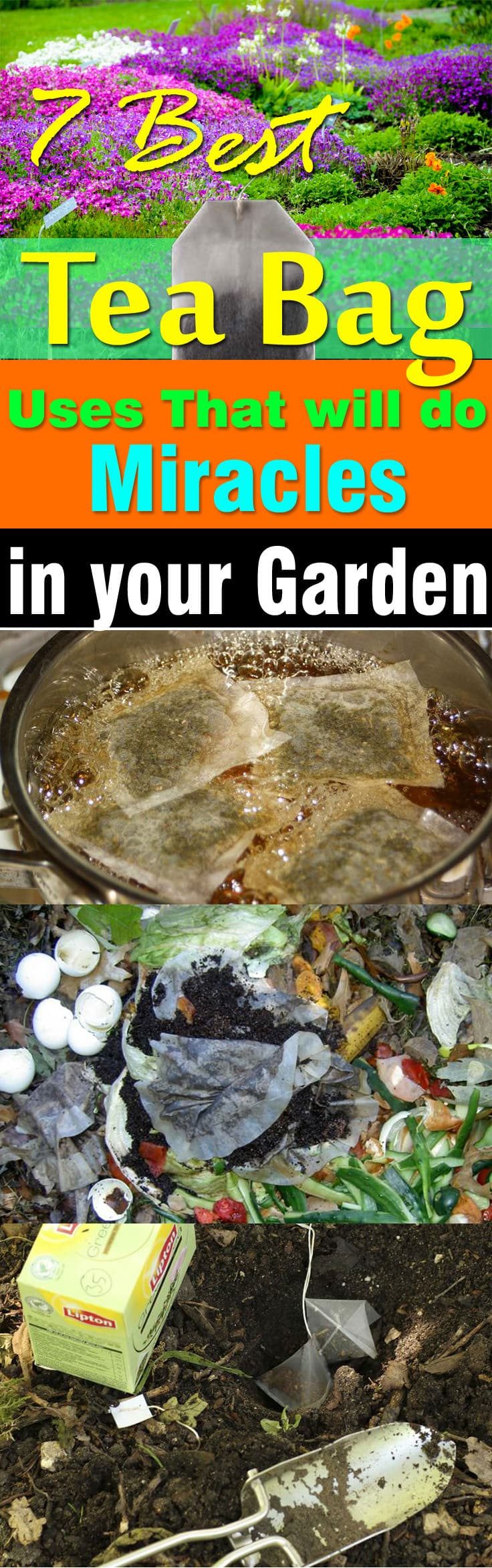 7 Best Tea Bag Uses In Garden Balcony Garden Web