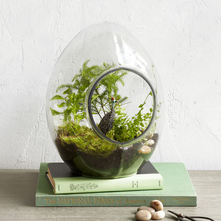 Indoor Herb Garden Display