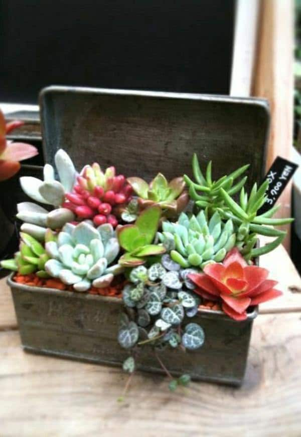 Indoor Garden Ideas indoor garden ideas You Can Grow Plants In Many Things And A Rustic Metal Planter Box Is One Of The Nicest Indoor Gardening Ideas To Try Plant Some Good Looking Houseplants Or