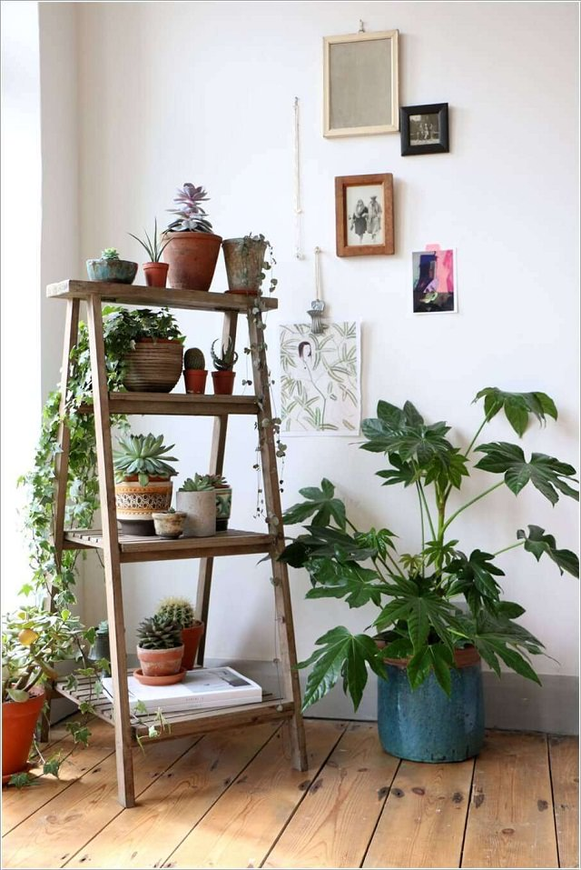 Vertical Indoor Garden 15 brilliant diy vertical indoor garden ideas to help you create previously we wrote a lot about the use of ladder planter in a balcony or rooftop garden a practical idea you can apply it to your indoor garden too workwithnaturefo