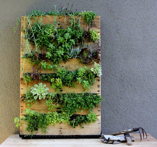 Make a vertical pallet planter to create an adorable indoor garden easily  and inexpensively. They'll provide enough space for growing herbs and  succulents ...
