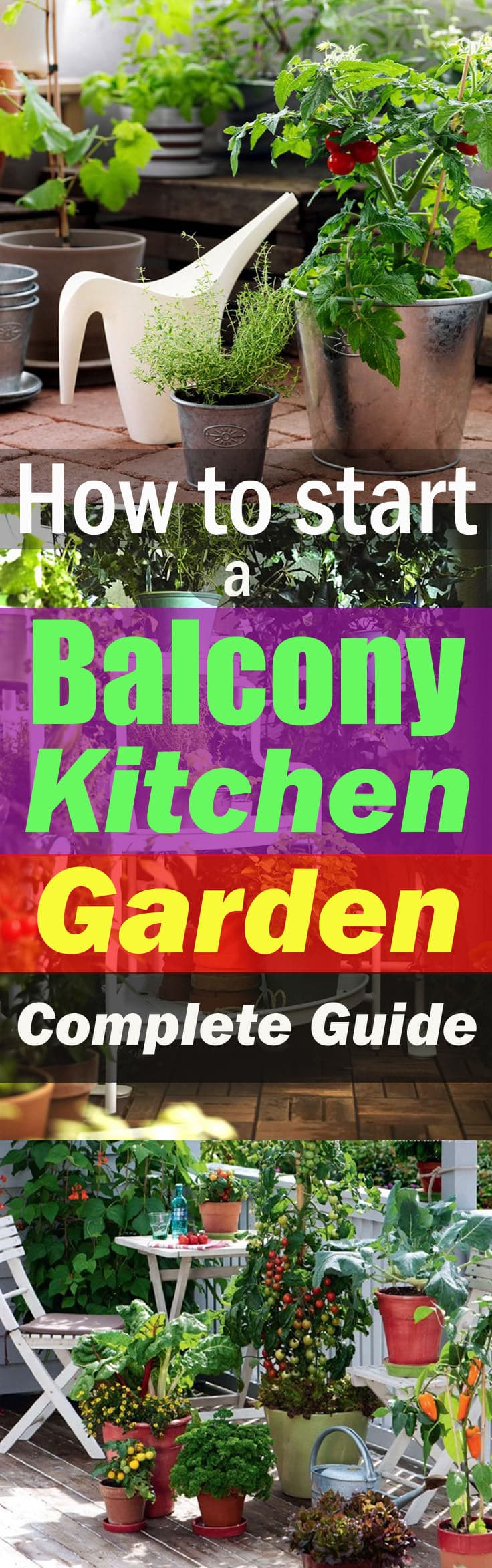 Organic Kitchen Garden How To Start A Balcony Kitchen Garden Complete Guide Balcony