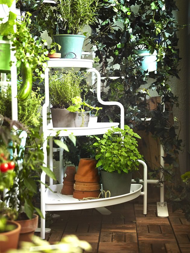 How To Start A Balcony Kitchen Garden | Complete Guide | Balcony