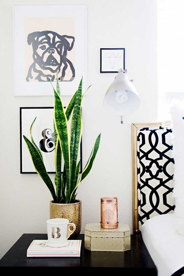 According to NASA  the snake plant is among the 10 best houseplants that  help filter the air  It absorbs carbon dioxide while at the same time  releases. 14 Best Houseplants for a Restful Sleep   Balcony Garden Web