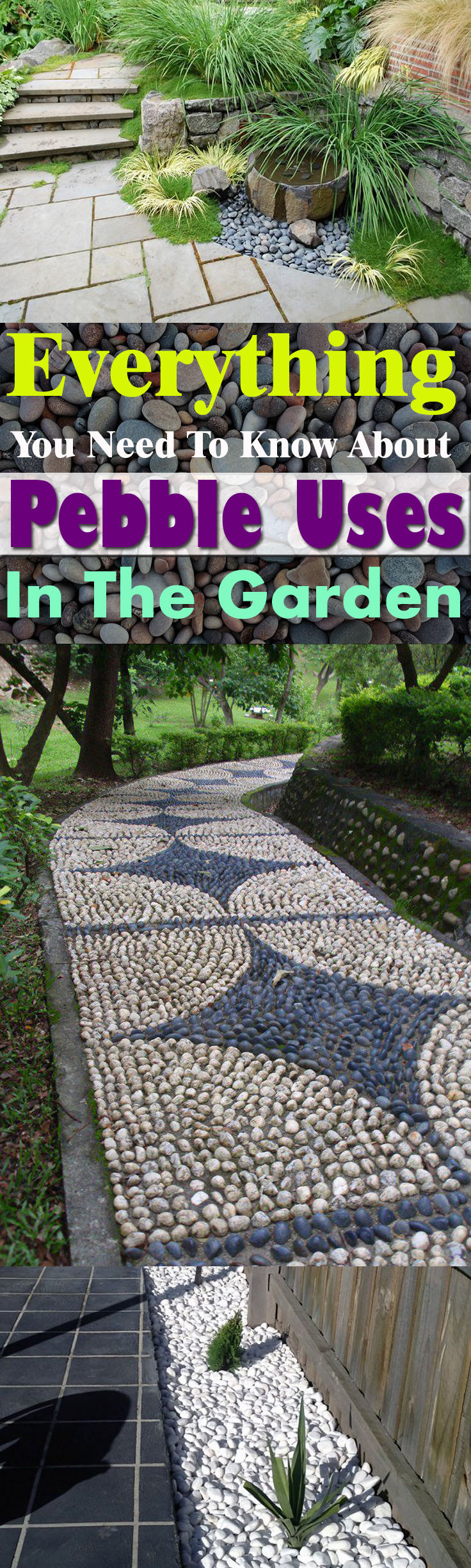 Pebble Garden Everything You Need To Know About Using Pebbles In The Garden