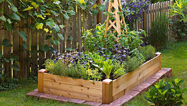How To Create A Great Garden In Small Space