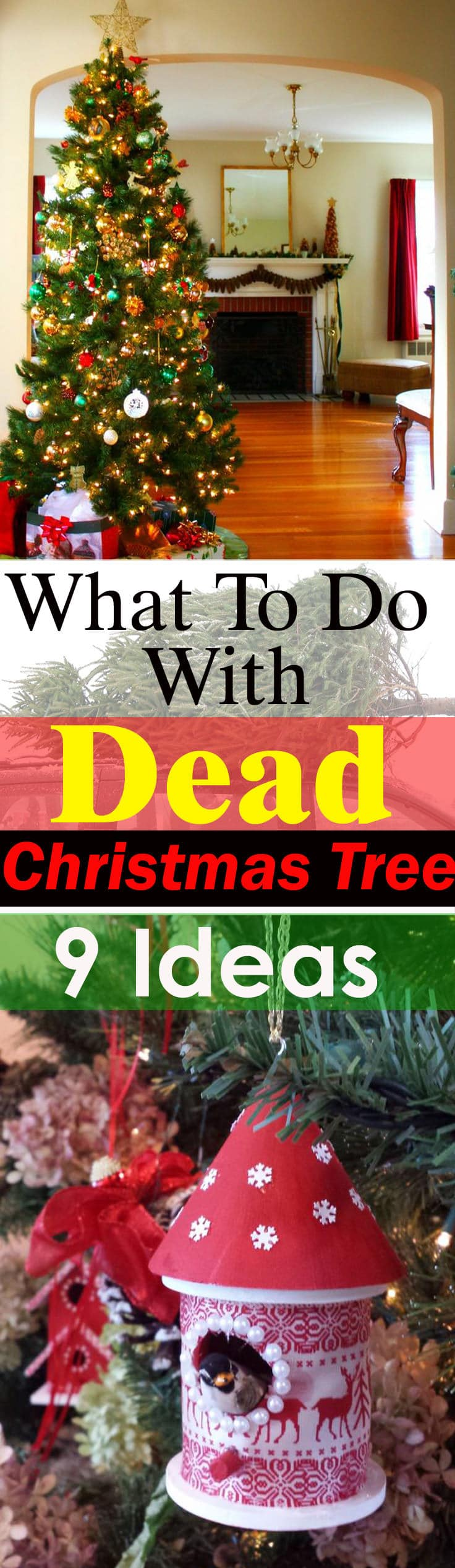 What to Do with Dead Christmas Tree? 9 Ideas | Balcony Garden Web