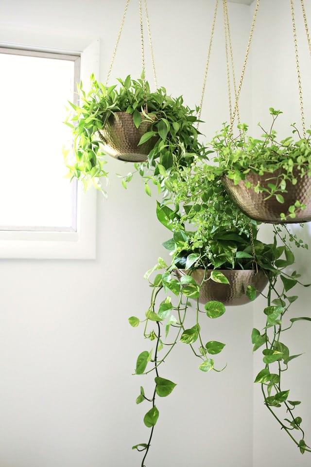 16 Offbeat DIY Hanging Planter Ideas | Balcony Garden Web
