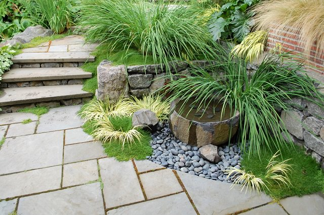 These Are Pleasant To Look At And Add A Wide Range Of Natural Colors To The  Garden, Thus, Making Your Garden Look More Natural.