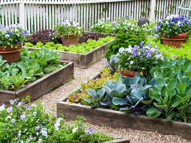 How to Create a Great Garden in Small Space | Balcony Garden Web