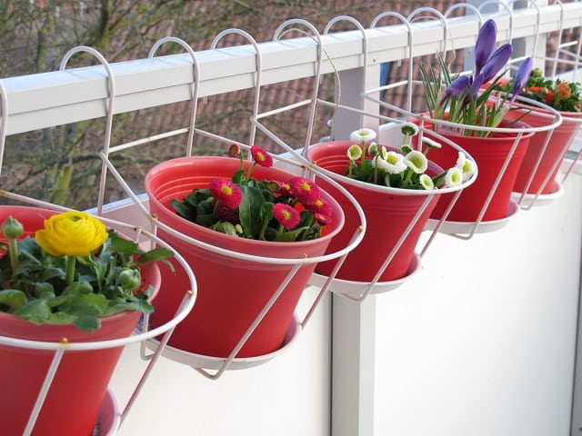 A Succession Of Mini Hanging Baskets Can Provide The Perfect Starter Option  For Those Who Are Just Beginning To Explore Their Gardening Abilities.