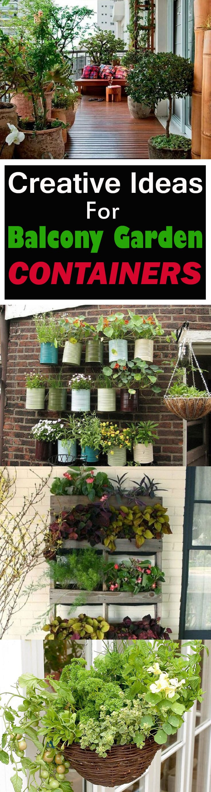 If You Have A Balcony Garden, It Doesnu0027t Mean You Canu0027t