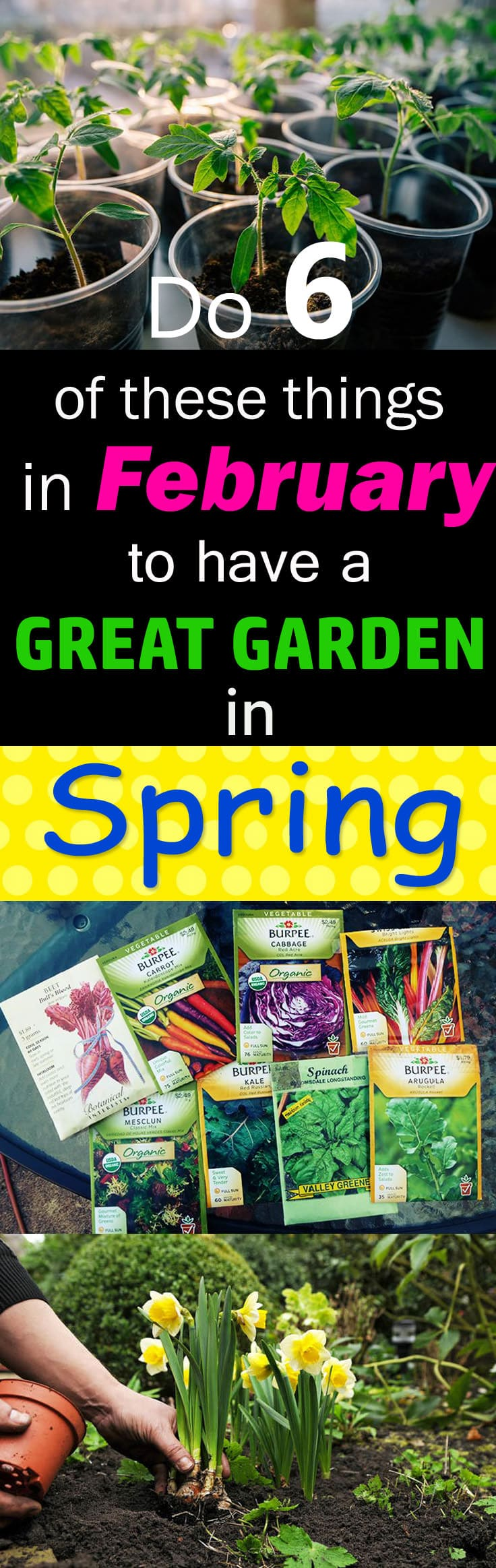 Image Result For How To Start Your Garden After Winter
