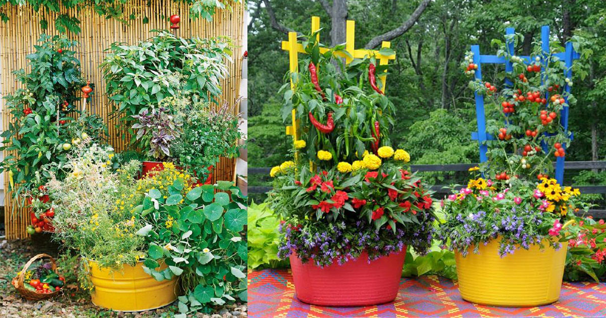 15 Stunning Container Vegetable Garden Design Ideas & Tips | Balcony ...