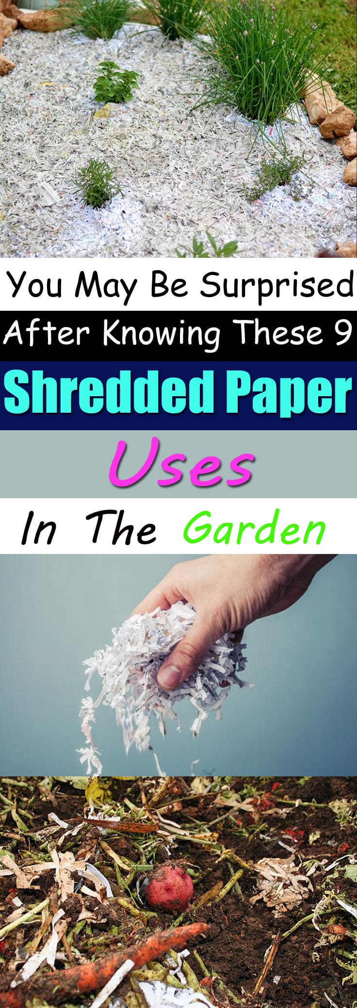 Where to have papers shredded