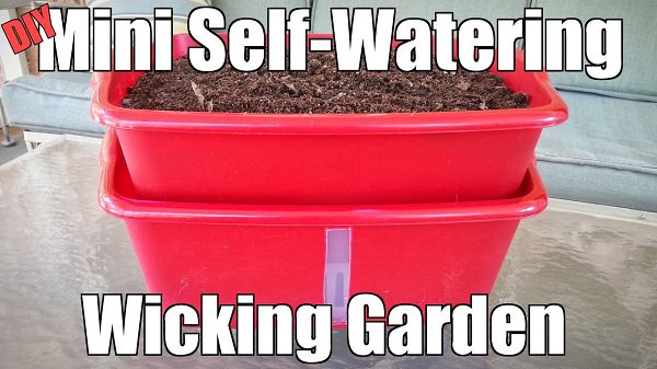 A Wicking Bed Container Garden Is A Simple, Ingenious And Space Saving  Alternative To Growing Plants In The Garden Like Most People Do.