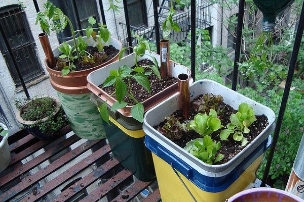 14 best diy self watering container garden ideas balcony for Watering vegetable garden
