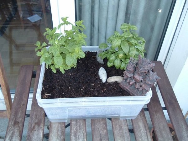 Container Ideas For Gardening summer shade container summer gardening ideas armstrong garden centers Diy Self Watering Container Garden Ideas 9
