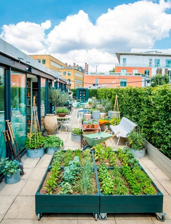 Roof Garden Ideas. Image Credit: Homes U0026 Gardens
