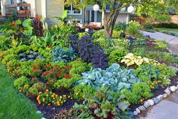 These 18 Amazing Coffee Uses Can Change The Way You Garden Balcony Garden Web