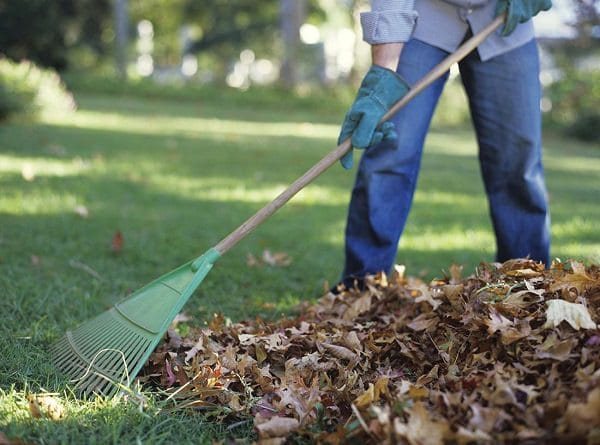 If You Are Into Gardening, Then You Must Know How Yardu0027s Waste Piles Up  Every Time. It Becomes Difficult To Move This Off. Burlap Can Be Used To  Rake In ...